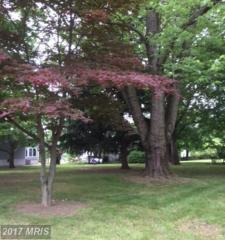 LOTS 52/53 S Marlyn Avenue, Essex, MD 21221 (#BC9958941) :: Pearson Smith Realty
