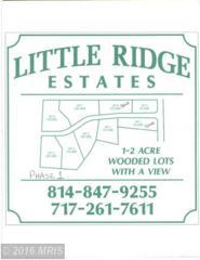 Ridge Way Drive, Everett, PA 15537 (#BD9627332) :: Pearson Smith Realty