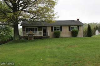 2075 Cumberland Road, Bedford, PA 15522 (#BD9931149) :: Pearson Smith Realty