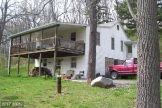 97-AC Mountain Road, Hyndman, PA 15545 (#BD9949674) :: Pearson Smith Realty