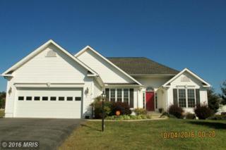 284 Bashore Drive, Martinsburg, WV 25404 (#BE9782060) :: Pearson Smith Realty
