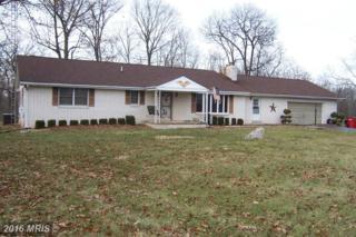 207 Lineweaver Lane, Martinsburg, WV 25404 (#BE9828927) :: Pearson Smith Realty