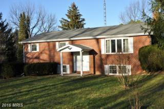 3939 Greensburg Road, Martinsburg, WV 25404 (#BE9831397) :: Pearson Smith Realty