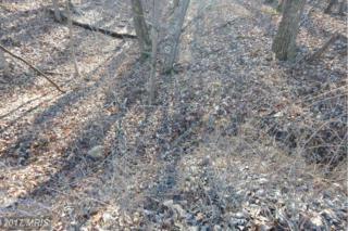 269 Possum Hollow Trail, Gerrardstown, WV 25420 (#BE9841921) :: LoCoMusings
