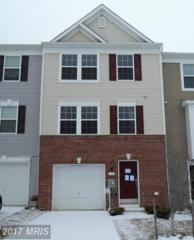 18 Appalachian Court, Falling Waters, WV 25419 (#BE9848457) :: Pearson Smith Realty