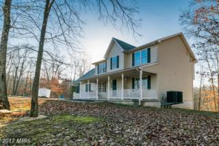 173 Depot Mills Drive, Gerrardstown, WV 25420 (#BE9850374) :: Pearson Smith Realty
