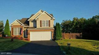 78 Coralberry Drive, Martinsburg, WV 25401 (#BE9850911) :: LoCoMusings