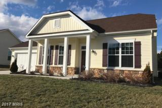 131 Liverpool Lane, Martinsburg, WV 25405 (#BE9852920) :: Pearson Smith Realty