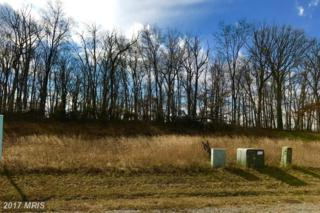LOT 236 Webber Springs Drive, Inwood, WV 25428 (#BE9853931) :: Pearson Smith Realty