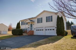 200 Michigan Drive, Falling Waters, WV 25419 (#BE9855898) :: Pearson Smith Realty