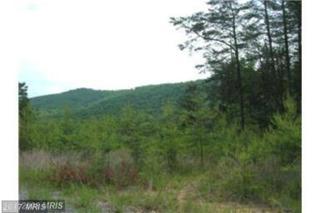 Tear Drop Trail, Gerrardstown, WV 25420 (#BE9863783) :: LoCoMusings