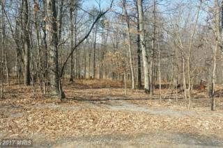 Potters Court, Gerrardstown, WV 25420 (#BE9868436) :: Pearson Smith Realty