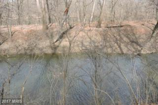 Lot 41 Stayman Drive, Martinsburg, WV 25401 (#BE9868824) :: Pearson Smith Realty