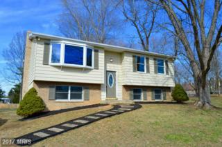 91 Merrimack Drive, Falling Waters, WV 25419 (#BE9871230) :: Pearson Smith Realty