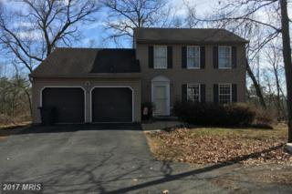 101 Manassas Drive, Falling Waters, WV 25419 (#BE9872413) :: LoCoMusings