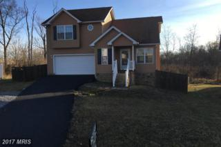 47 Clematis Court, Martinsburg, WV 25401 (#BE9877196) :: LoCoMusings