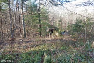 203 Racoon Trail, Gerrardstown, WV 25420 (#BE9877643) :: LoCoMusings