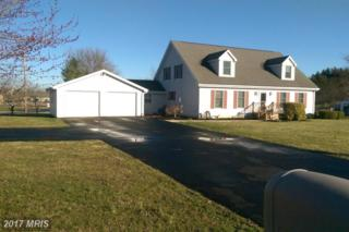 17 Muse Street, Falling Waters, WV 25419 (#BE9878482) :: Pearson Smith Realty