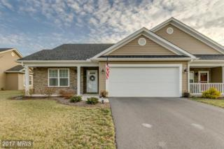 53 Chagrin Drive, Falling Waters, WV 25419 (#BE9880016) :: LoCoMusings