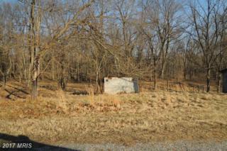 Marlpit Lane, Martinsburg, WV 25405 (#BE9888843) :: LoCoMusings