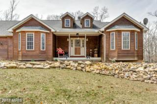 262 Boiling Springs, Gerrardstown, WV 25420 (#BE9888970) :: Pearson Smith Realty