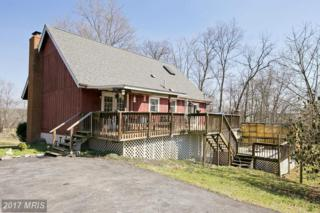 442 Mission Lane, Bunker Hill, WV 25413 (#BE9889196) :: Pearson Smith Realty
