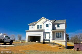 179 Eiderdown Drive, Martinsburg, WV 25405 (#BE9895195) :: Pearson Smith Realty