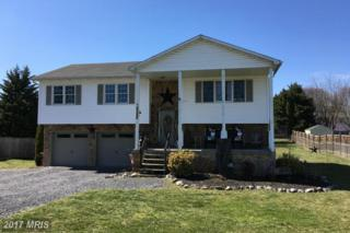 54 Declaration Drive, Inwood, WV 25428 (#BE9899588) :: Pearson Smith Realty