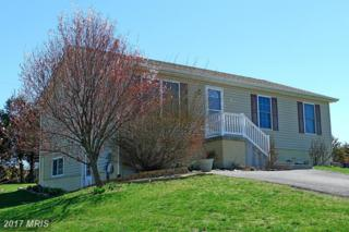 81 Gum Tree Drive, Inwood, WV 25428 (#BE9900669) :: Pearson Smith Realty