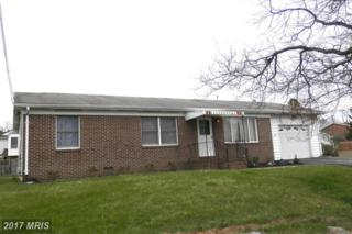 149 Still Meadow Drive, Martinsburg, WV 25405 (#BE9905317) :: Pearson Smith Realty