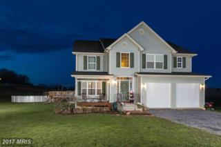 835 Rural Hill Lane, Martinsburg, WV 25403 (#BE9911636) :: Pearson Smith Realty