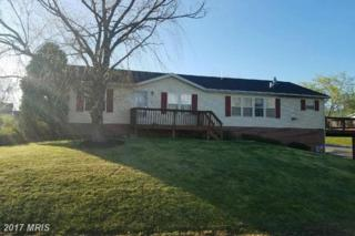 17 Ruddy Duck Lane, Martinsburg, WV 25403 (#BE9911877) :: Pearson Smith Realty