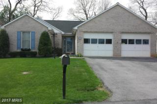 145 Gemstone Drive, Martinsburg, WV 25401 (#BE9913260) :: LoCoMusings