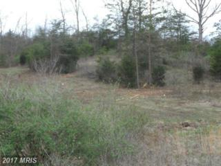 Lot B2 Conner Bowers, Hedgesville, WV 25427 (#BE9914211) :: Pearson Smith Realty