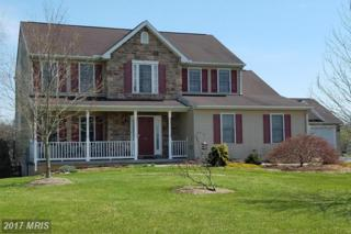 298 Carrington Drive, Falling Waters, WV 25419 (#BE9914920) :: Pearson Smith Realty