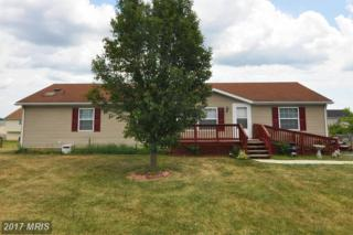 82 Peregrine Drive, Martinsburg, WV 25405 (#BE9916125) :: Pearson Smith Realty
