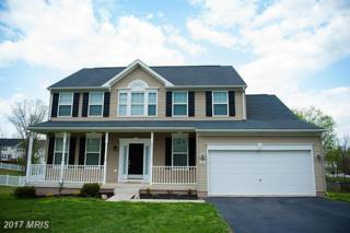 69 Rippling Waters Way, Falling Waters, WV 25419 (#BE9920236) :: Pearson Smith Realty