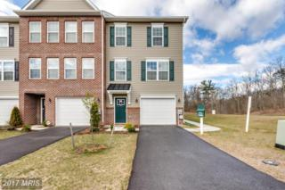 18 Savage Court, Falling Waters, WV 25419 (#BE9923003) :: Pearson Smith Realty