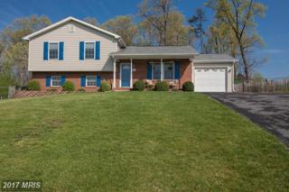 129 Crockett Lane, Martinsburg, WV 25405 (#BE9926409) :: Pearson Smith Realty