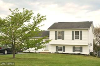 133 Farm Pond Lane, Martinsburg, WV 25404 (#BE9927264) :: Pearson Smith Realty