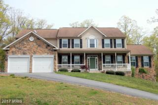 93 Rotterham Drive, Hedgesville, WV 25427 (#BE9927394) :: Pearson Smith Realty