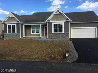 Statice Drive, Hedgesville, WV 25427 (#BE9927599) :: Pearson Smith Realty