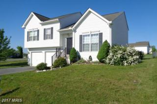 11 Snipe Lane, Martinsburg, WV 25405 (#BE9929448) :: Pearson Smith Realty