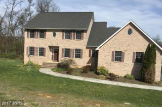 2002 Goldmiller Road, Bunker Hill, WV 25413 (#BE9933666) :: Pearson Smith Realty