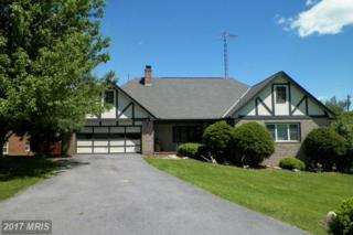 907 Hillcrest Drive, Martinsburg, WV 25401 (#BE9934613) :: Pearson Smith Realty