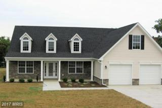 Melville Drive, Inwood, WV 25428 (#BE9939580) :: Pearson Smith Realty