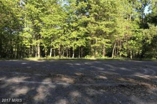 Vulpine Drive, Gerrardstown, WV 25420 (#BE9940835) :: Pearson Smith Realty