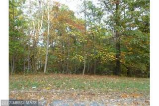 Vulpine Drive, Gerrardstown, WV 25420 (#BE9943757) :: Pearson Smith Realty
