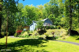 59 Saunders Drive, Falling Waters, WV 25419 (#BE9943977) :: Pearson Smith Realty
