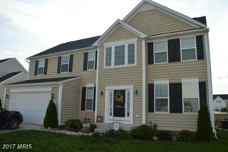 208 Daintree Drive, Martinsburg, WV 25403 (#BE9944362) :: Pearson Smith Realty
